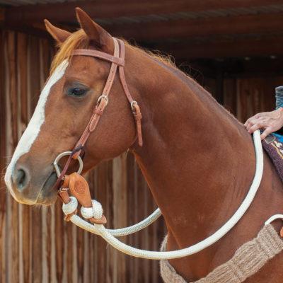 Martin Saddlery Colt Rein #LRN.